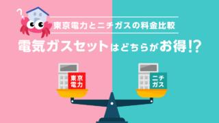 東京電力ニチガス